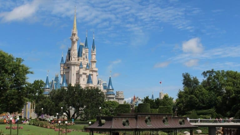 It's not Just for Kids: Things for Adults to do at Disney World
